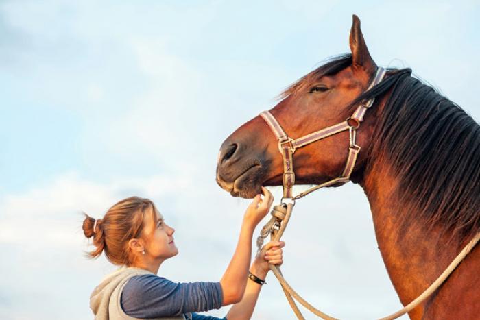 vrouw houdt paard vast